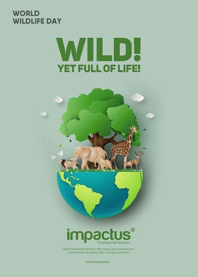 impactus-social-media-creative002